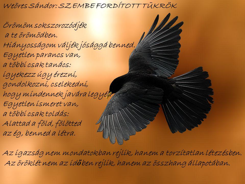 Weöres Sándor: SZEMBE FORDÍTOTT TÜKRÖK