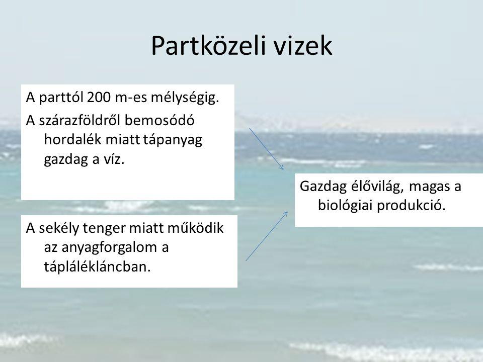 Partközeli vizek A parttól 200 m-es mélységig. A szárazföldről bemosódó hordalék miatt tápanyag gazdag a víz.