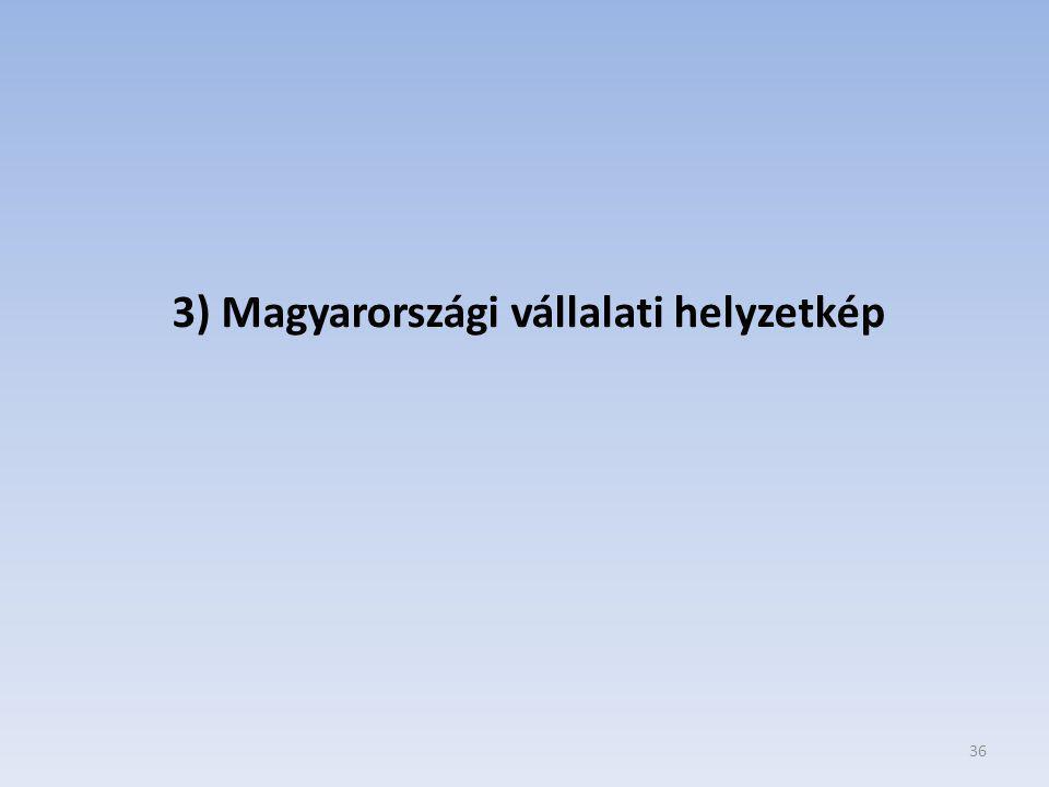 3) Magyarországi vállalati helyzetkép
