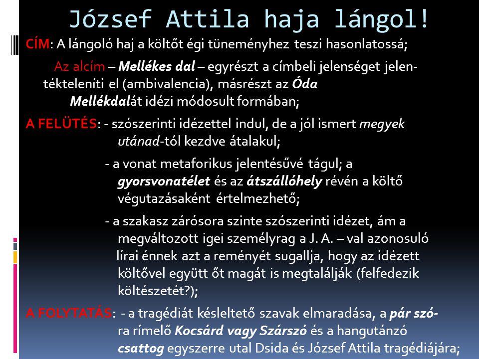 József Attila haja lángol!