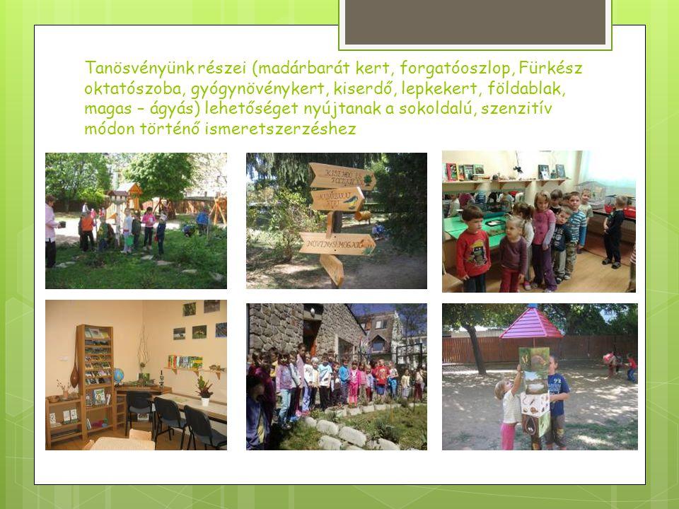 Tanösvényünk részei (madárbarát kert, forgatóoszlop, Fürkész oktatószoba, gyógynövénykert, kiserdő, lepkekert, földablak, magas – ágyás) lehetőséget nyújtanak a sokoldalú, szenzitív módon történő ismeretszerzéshez