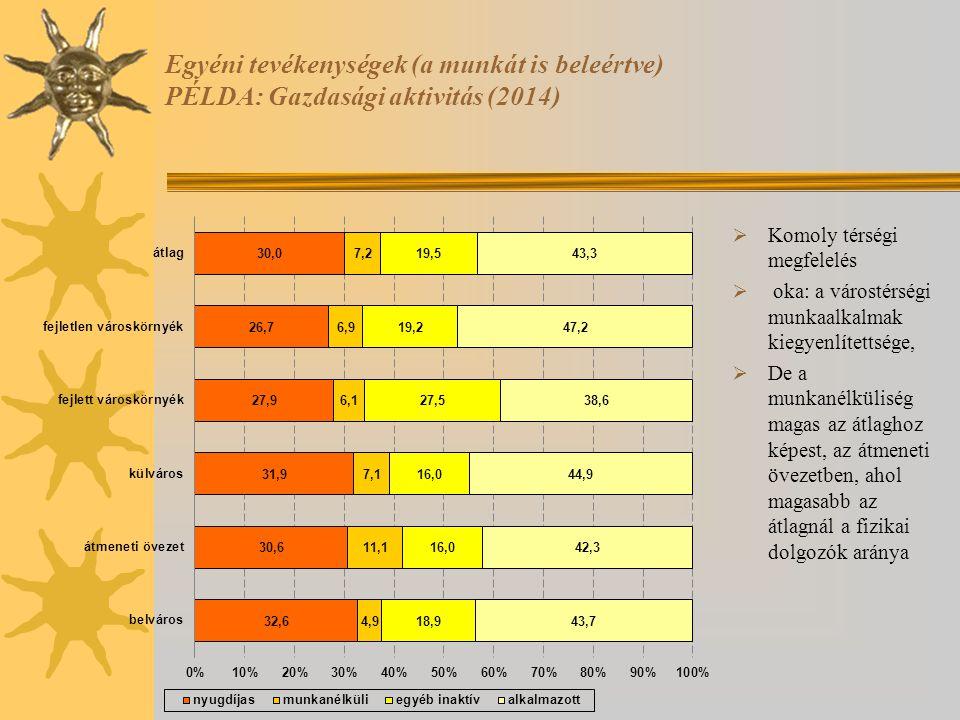 Egyéni tevékenységek (a munkát is beleértve) PÉLDA: Gazdasági aktivitás (2014)