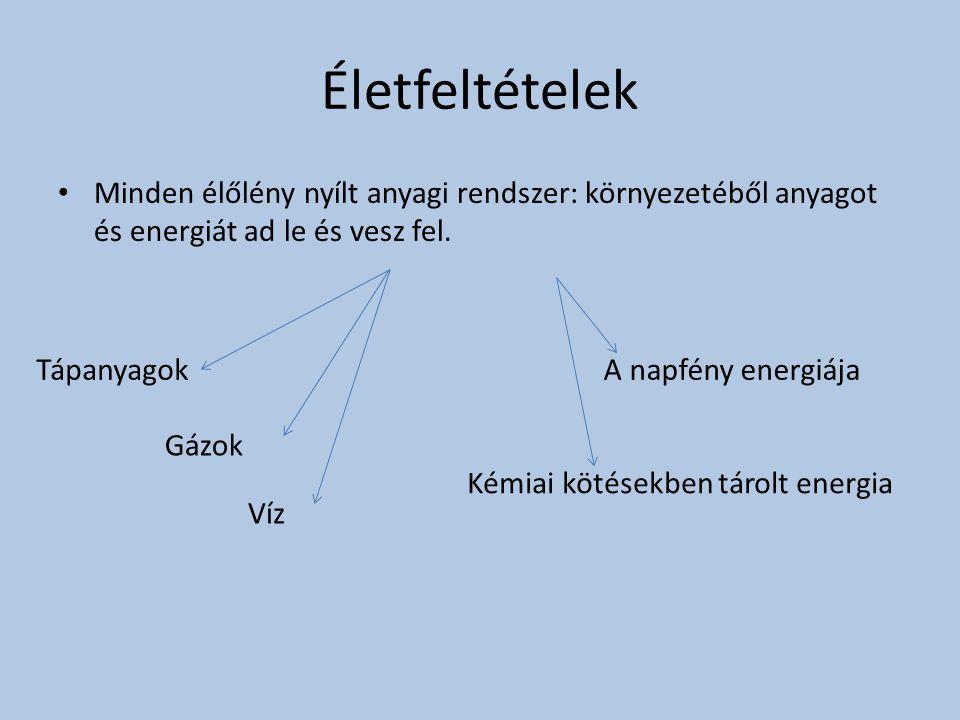 Életfeltételek Minden élőlény nyílt anyagi rendszer: környezetéből anyagot és energiát ad le és vesz fel.