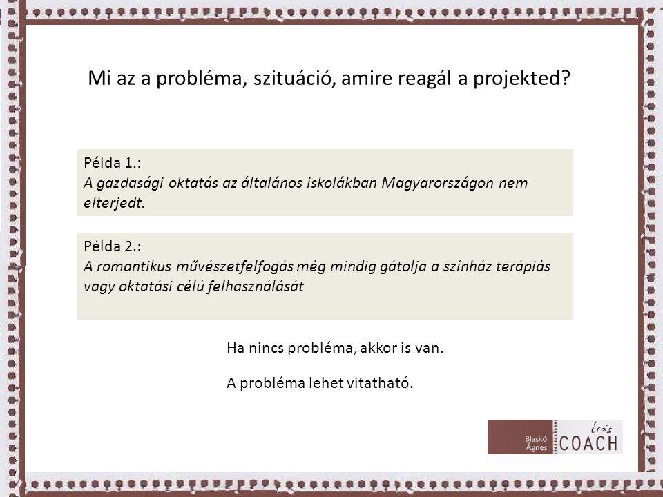 Mi az a probléma, szituáció, amire reagál a projekted
