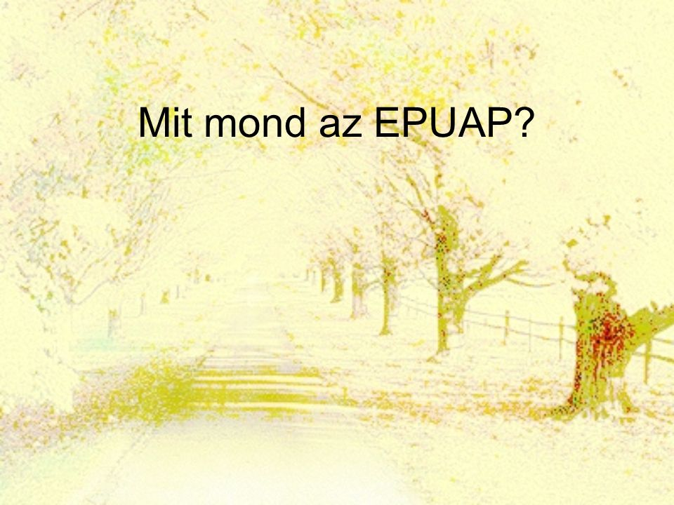 Mit mond az EPUAP