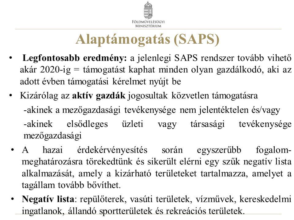 Alaptámogatás (SAPS)