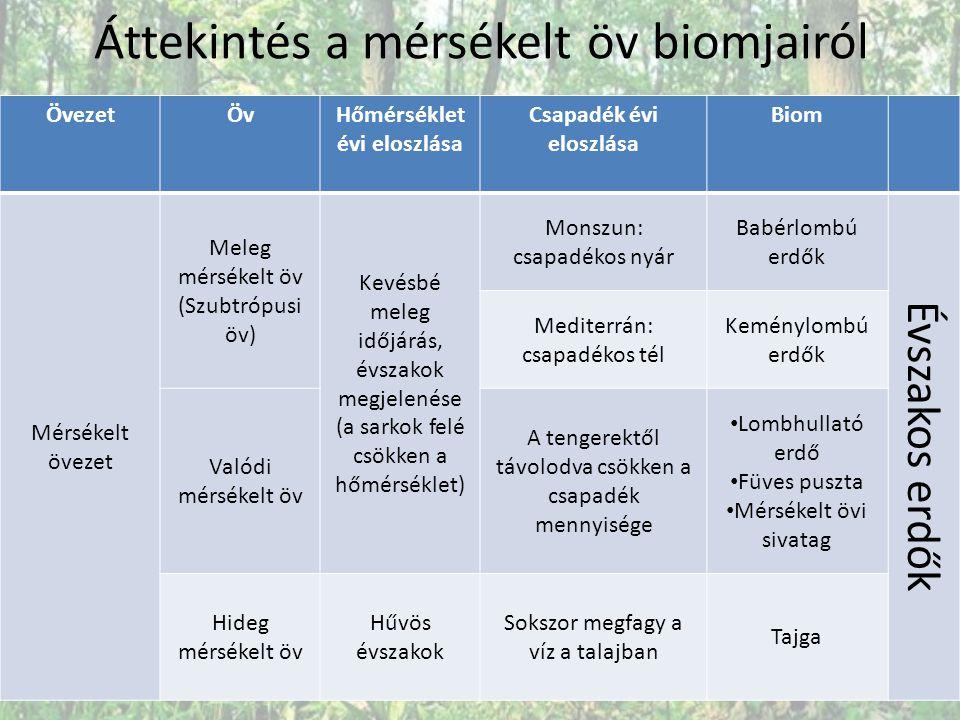 Áttekintés a mérsékelt öv biomjairól