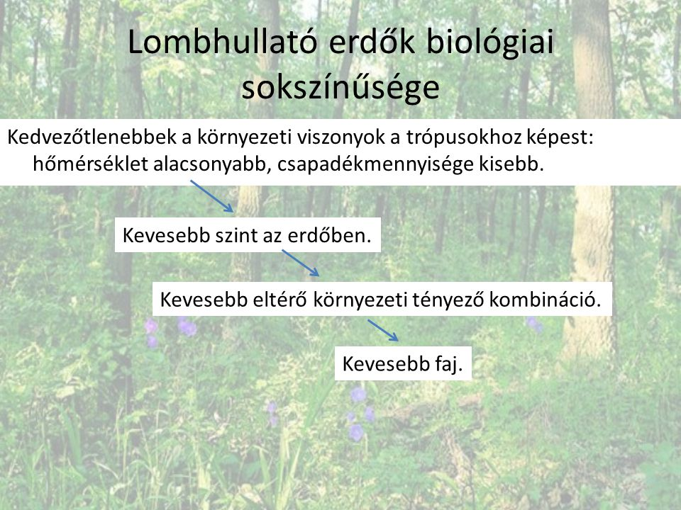 Lombhullató erdők biológiai sokszínűsége