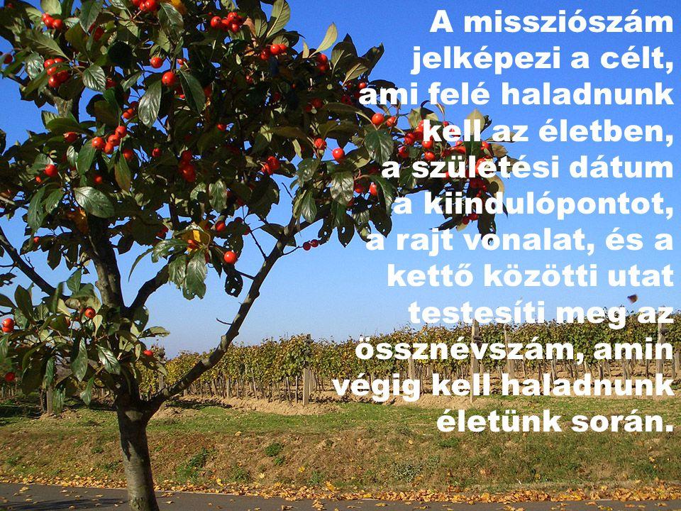 A missziószám jelképezi a célt, ami felé haladnunk kell az életben, a születési dátum a kiindulópontot, a rajt vonalat, és a kettő közötti utat testesíti meg az össznévszám, amin végig kell haladnunk életünk során.