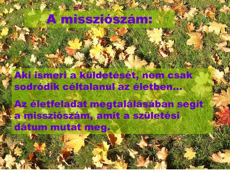 A missziószám: Aki ismeri a küldetését, nem csak sodródik céltalanul az életben…