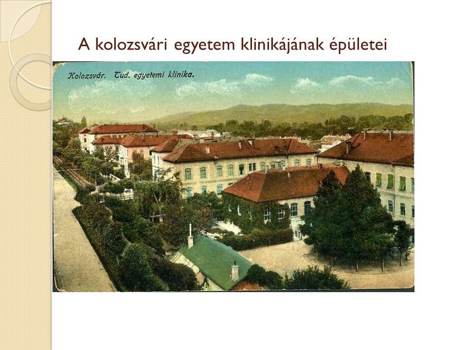 A kolozsvári egyetem klinikájának épületei