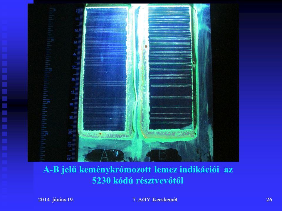 A-B jelű keménykrómozott lemez indikációi az 5230 kódú résztvevőtől