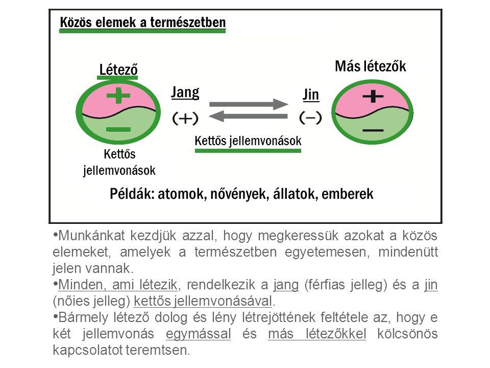 Példák: atomok, nővények, állatok, emberek