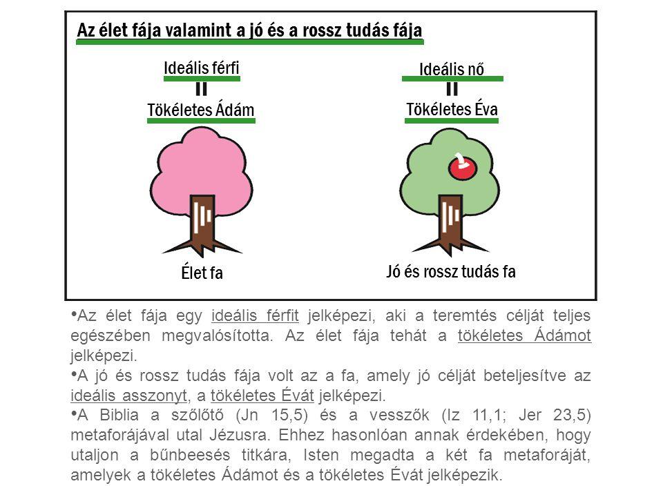 Az élet fája valamint a jó és a rossz tudás fája