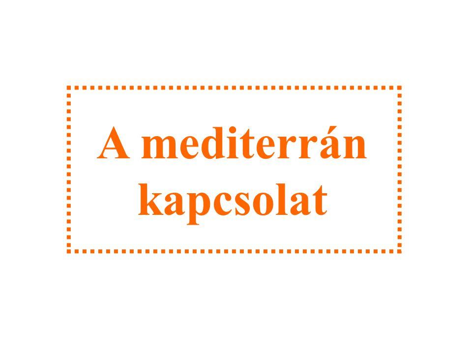 A mediterrán kapcsolat
