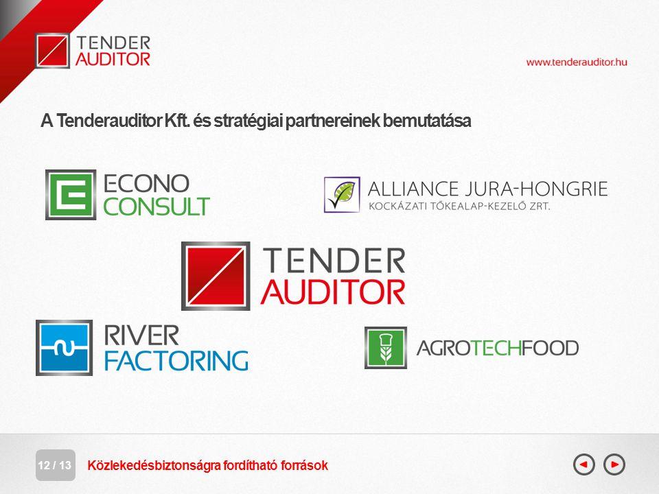 A Tenderauditor Kft. és stratégiai partnereinek bemutatása