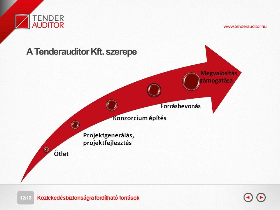 A Tenderauditor Kft. szerepe