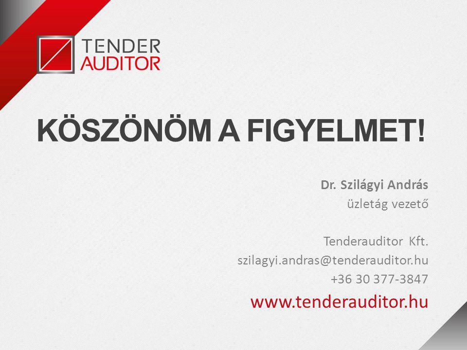 KÖSZÖNÖM A FIGYELMET! www.tenderauditor.hu Dr. Szilágyi András