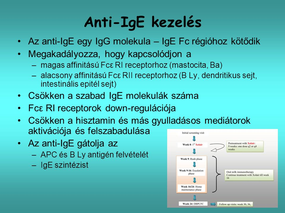 Anti-IgE kezelés Az anti-IgE egy IgG molekula – IgE Fc régióhoz kötődik. Megakadályozza, hogy kapcsolódjon a.