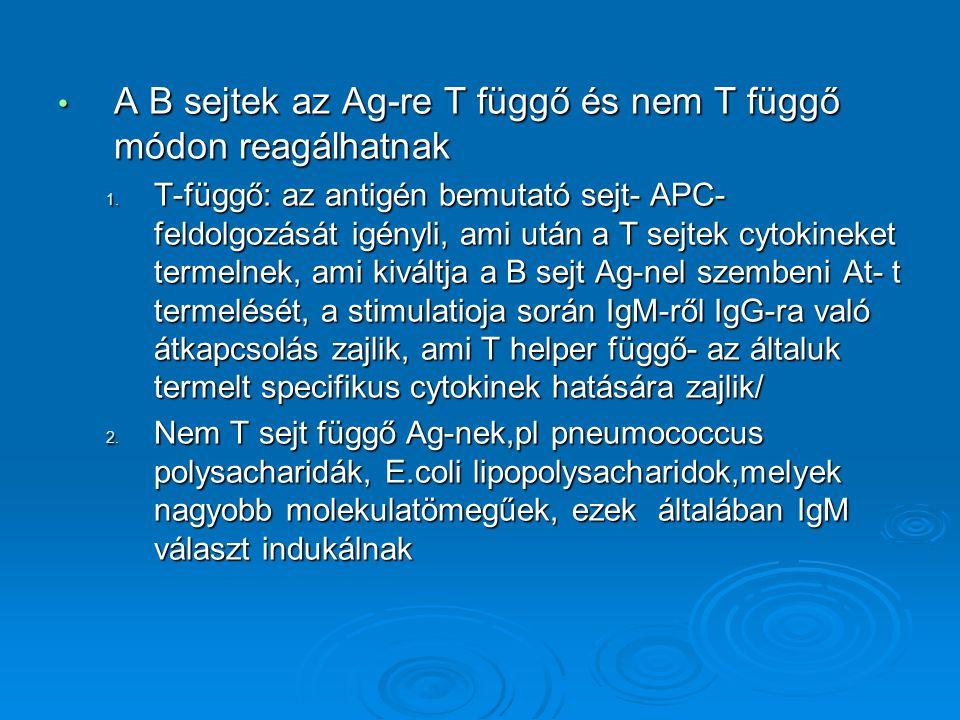 A B sejtek az Ag-re T függő és nem T függő módon reagálhatnak