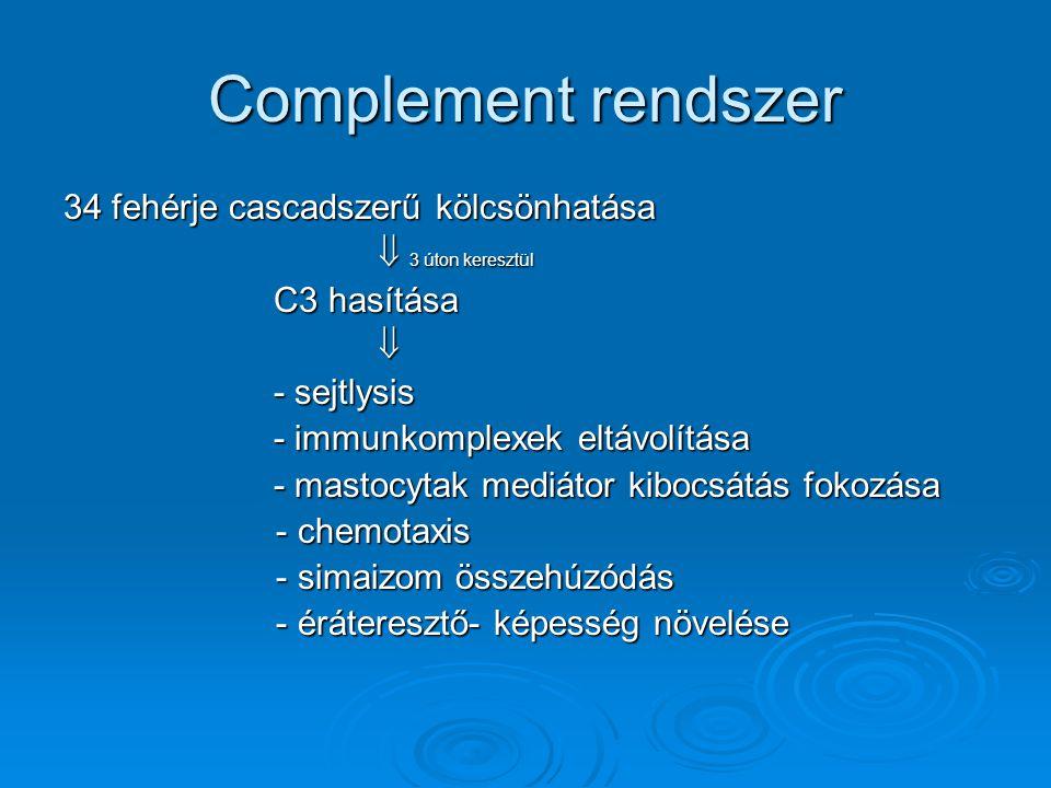 Complement rendszer 34 fehérje cascadszerű kölcsönhatása