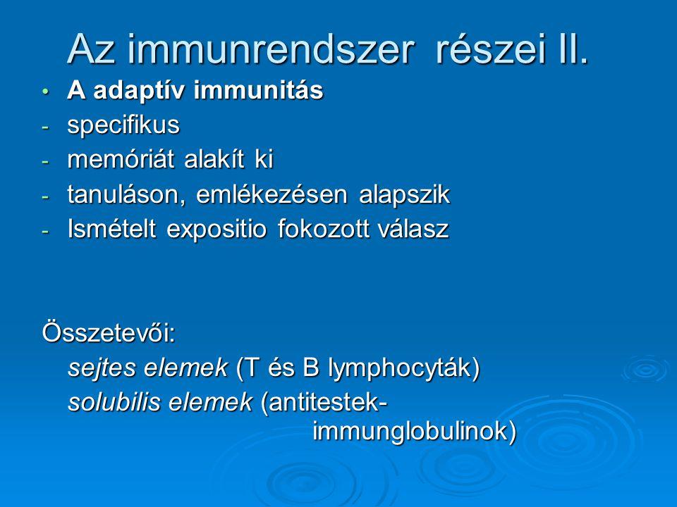 Az immunrendszer részei II.