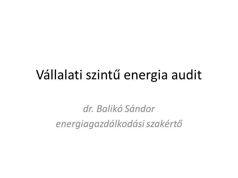 Vállalati szintű energia audit