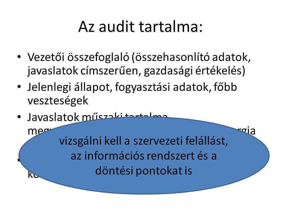 Az audit tartalma: Vezetői összefoglaló (összehasonlító adatok, javaslatok címszerűen, gazdasági értékelés)