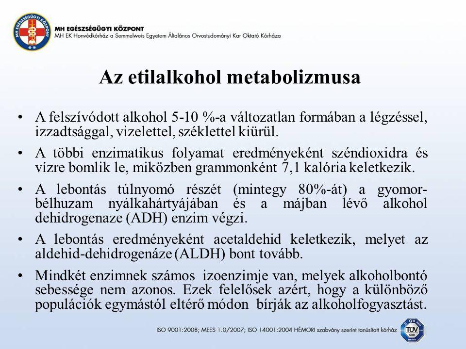 Az etilalkohol metabolizmusa