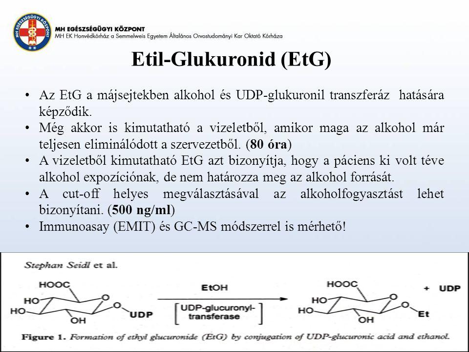 Etil-Glukuronid (EtG)