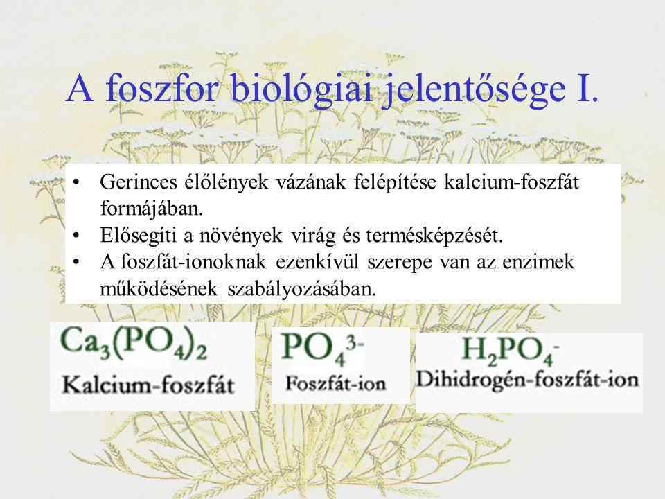 A foszfor biológiai jelentősége I.