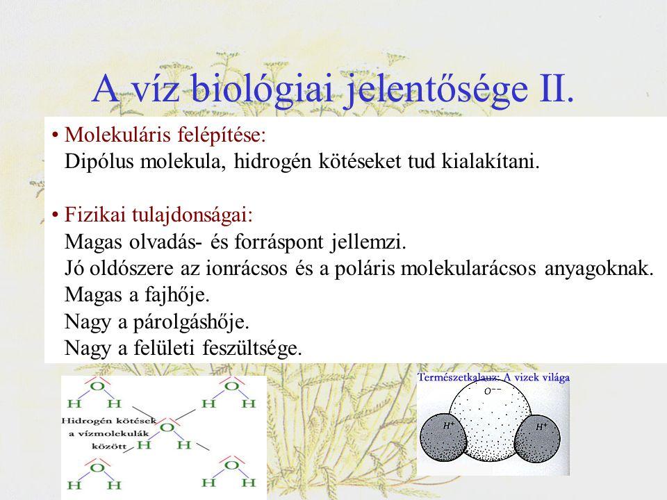 A víz biológiai jelentősége II.