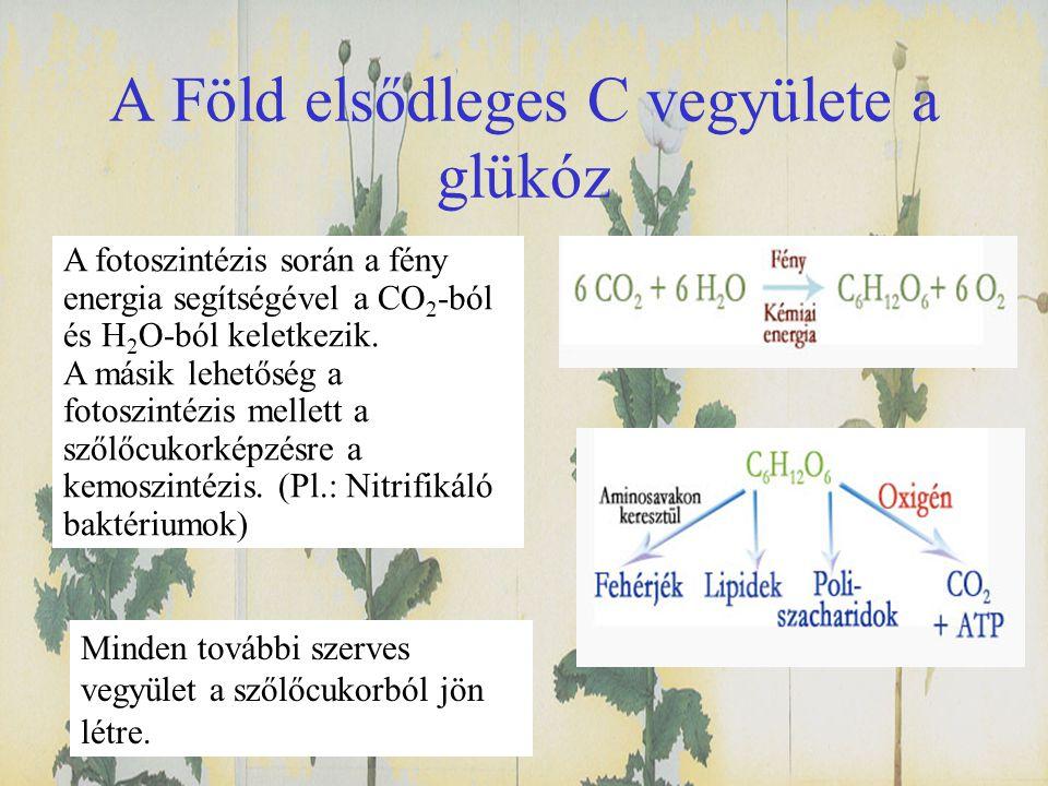 A Föld elsődleges C vegyülete a glükóz