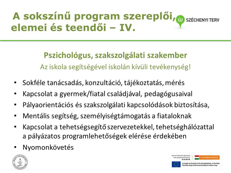 A sokszínű program szereplői, elemei és teendői – IV.