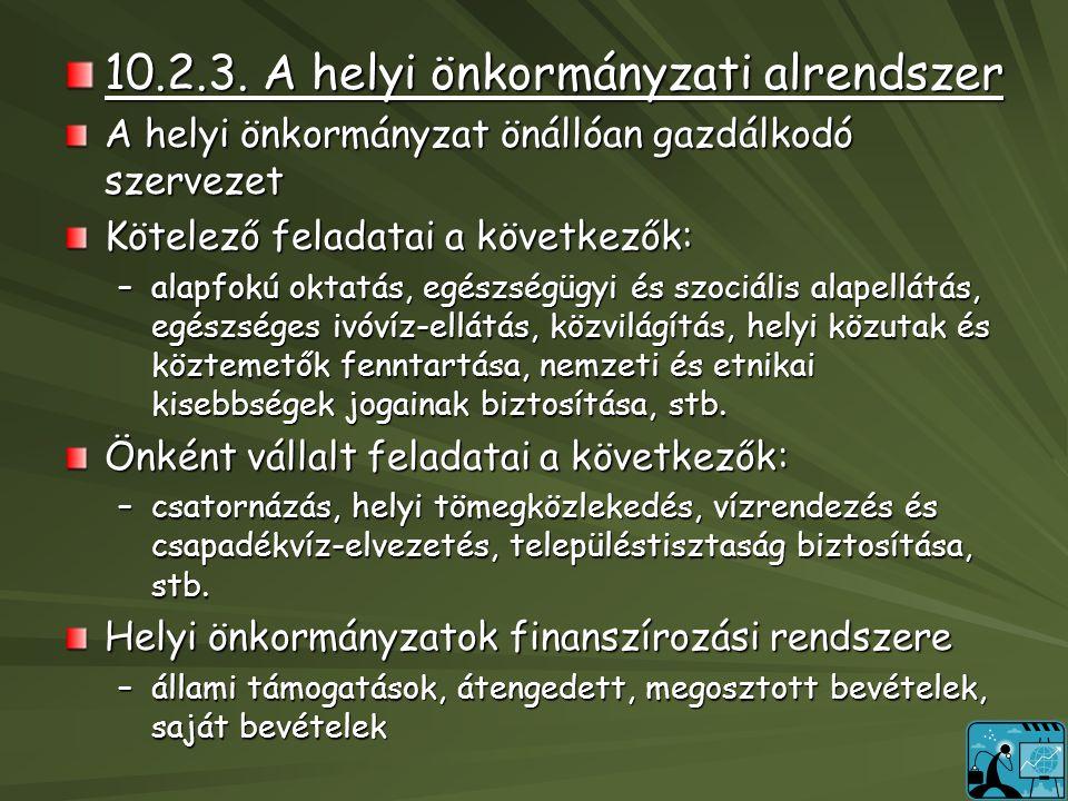 10.2.3. A helyi önkormányzati alrendszer