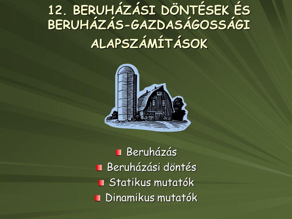 12. BERUHÁZÁSI DÖNTÉSEK ÉS BERUHÁZÁS-GAZDASÁGOSSÁGI ALAPSZÁMÍTÁSOK