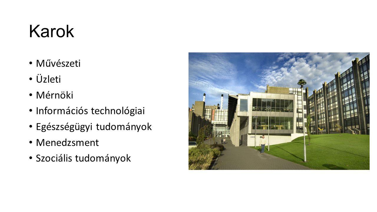 Karok Művészeti Üzleti Mérnöki Információs technológiai