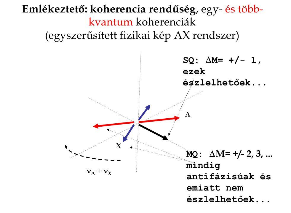 Emlékeztető: koherencia rendűség, egy- és több-kvantum koherenciák (egyszerűsített fizikai kép AX rendszer)