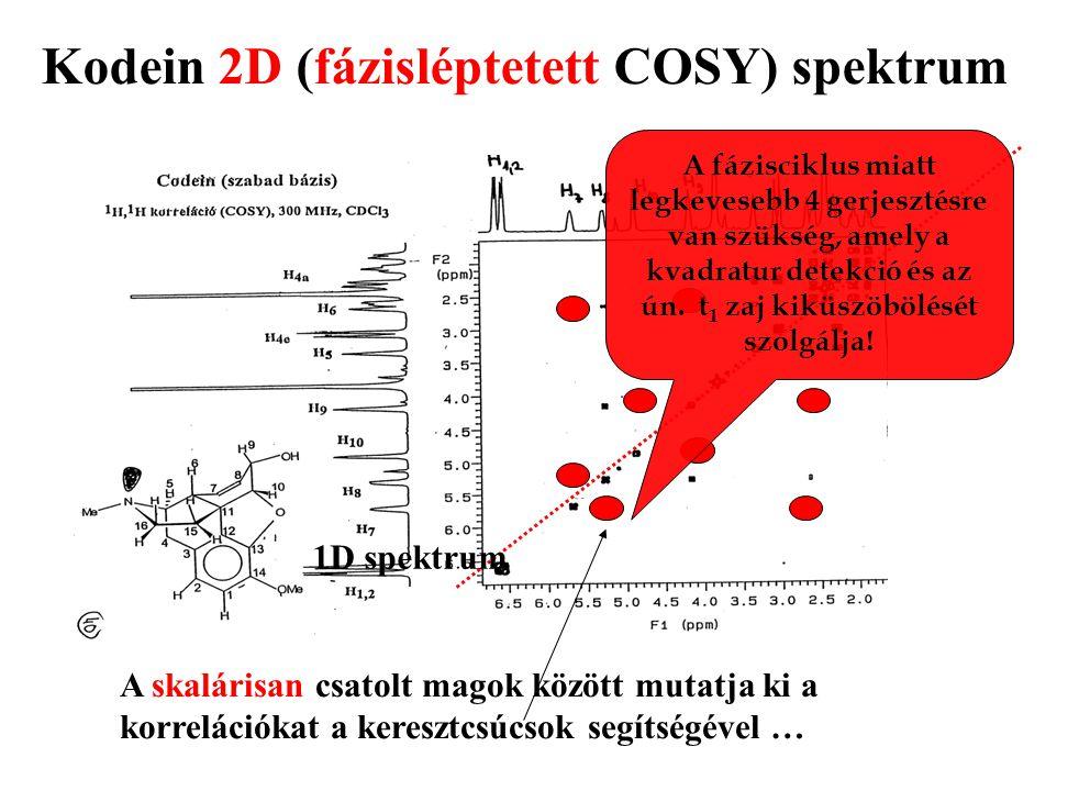 Kodein 2D (fázisléptetett COSY) spektrum