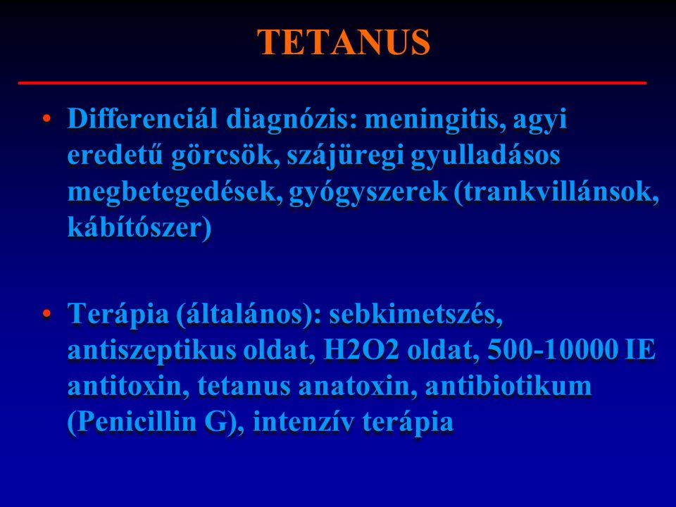 TETANUS Differenciál diagnózis: meningitis, agyi eredetű görcsök, szájüregi gyulladásos megbetegedések, gyógyszerek (trankvillánsok, kábítószer)