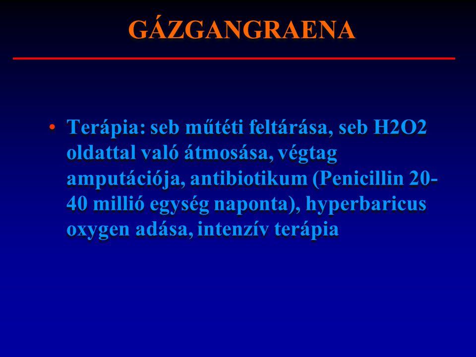 GÁZGANGRAENA