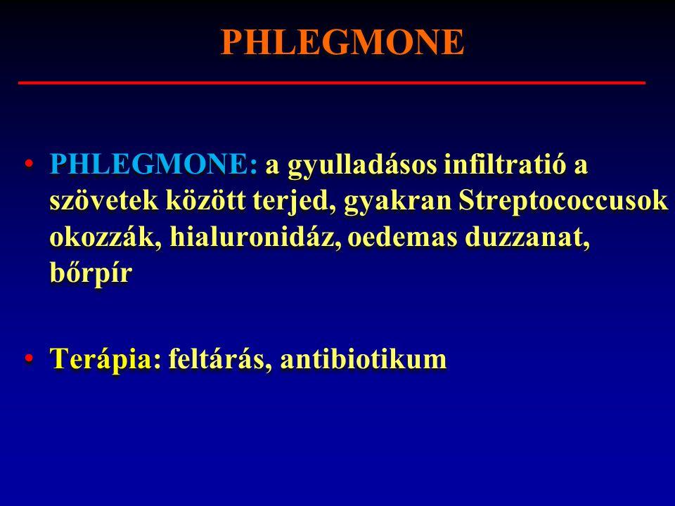 PHLEGMONE PHLEGMONE: a gyulladásos infiltratió a szövetek között terjed, gyakran Streptococcusok okozzák, hialuronidáz, oedemas duzzanat, bőrpír.