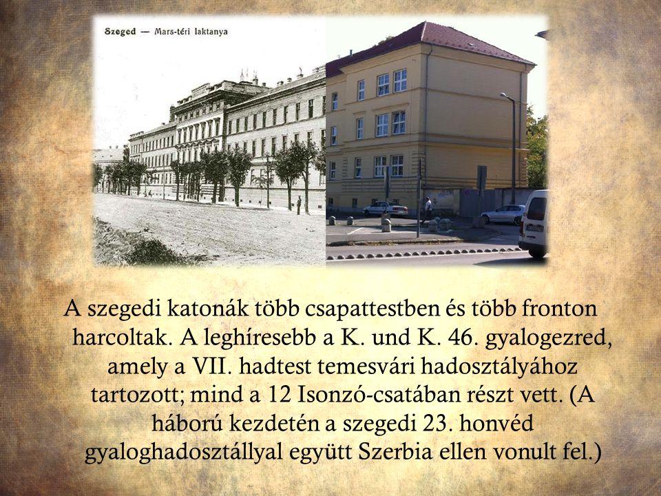 A szegedi katonák több csapattestben és több fronton harcoltak