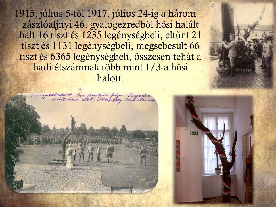 1915. július 5-től 1917. július 24-ig a három zászlóaljnyi 46