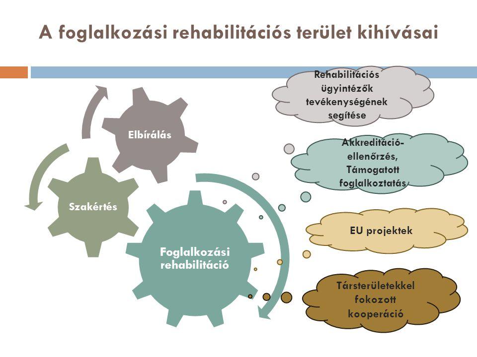 A foglalkozási rehabilitációs terület kihívásai