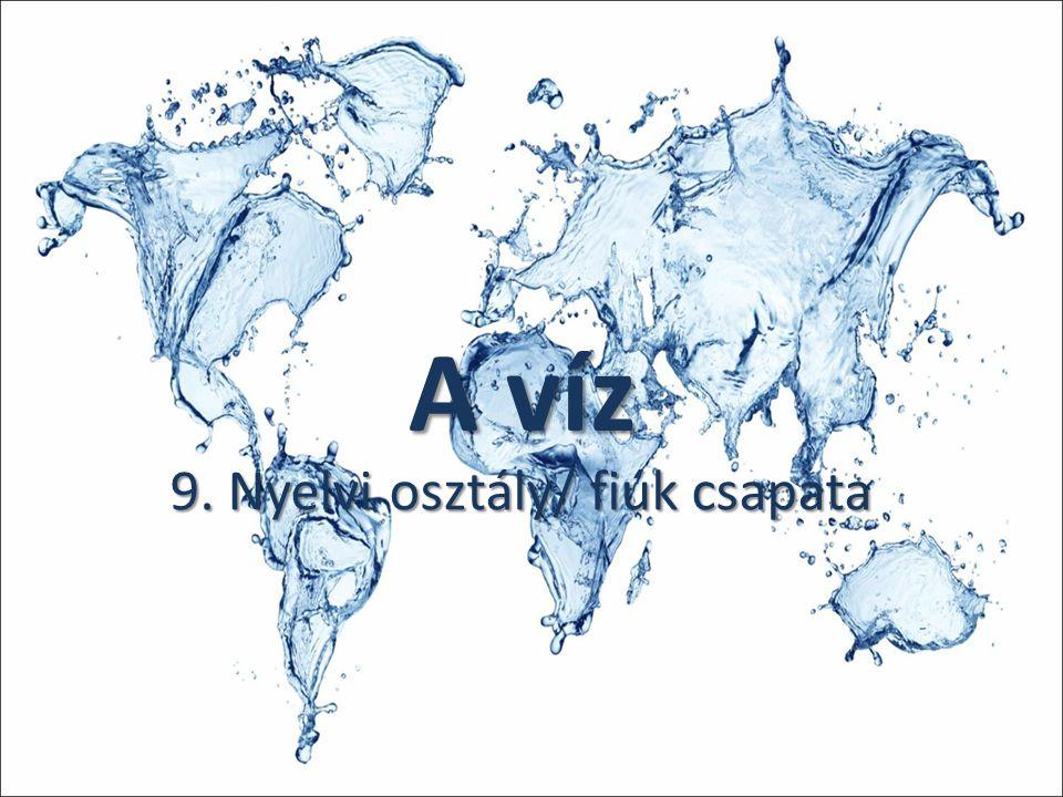 A víz 9. Nyelvi osztály/ fiúk csapata