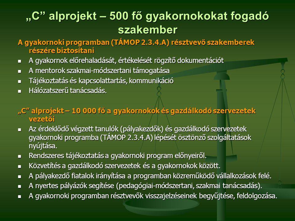 """""""C alprojekt – 500 fő gyakornokokat fogadó szakember"""