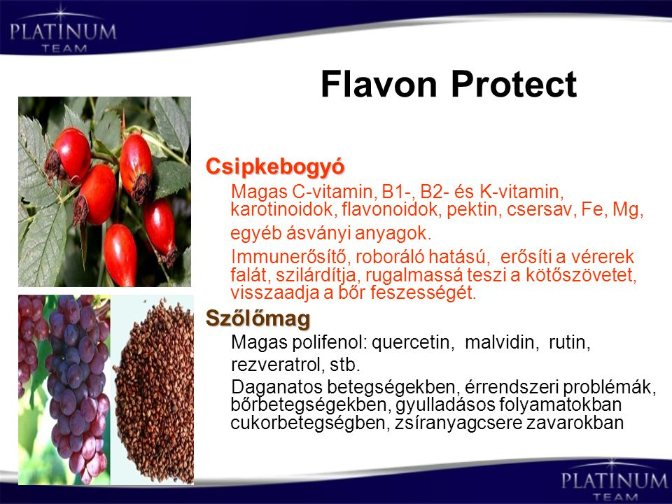 Flavon Protect Csipkebogyó Szőlőmag