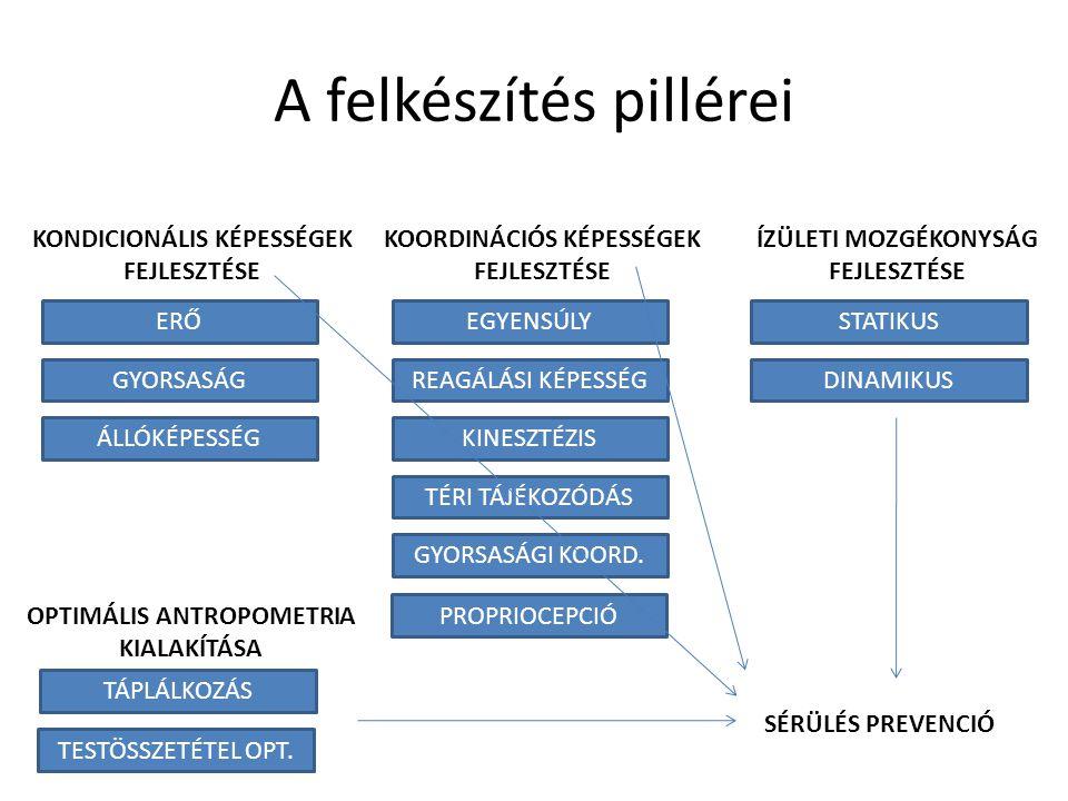 A felkészítés pillérei