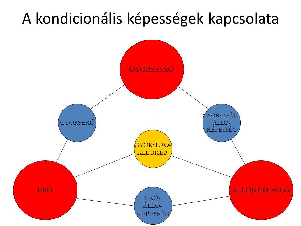A kondicionális képességek kapcsolata